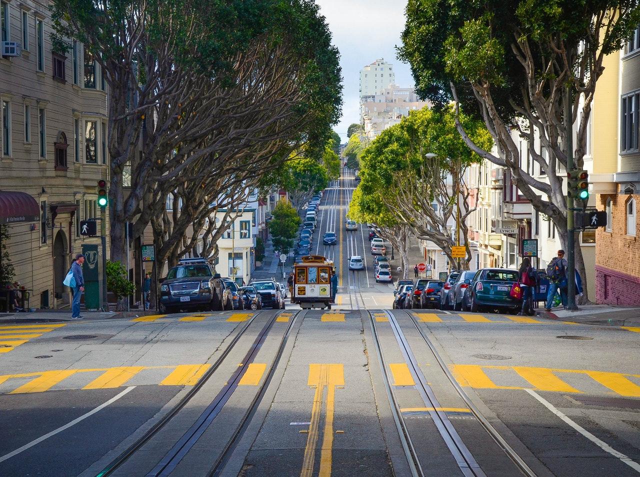 San Francisco neighborhoods for pet owners